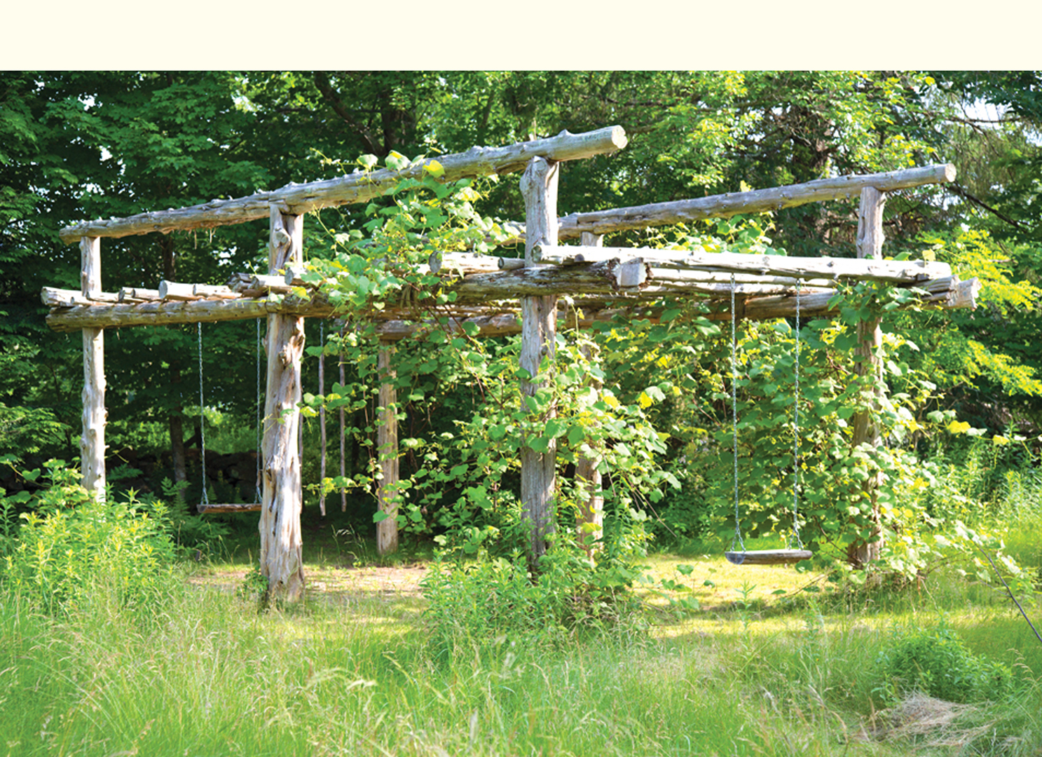 Claudia Dinep, Grape Arbor