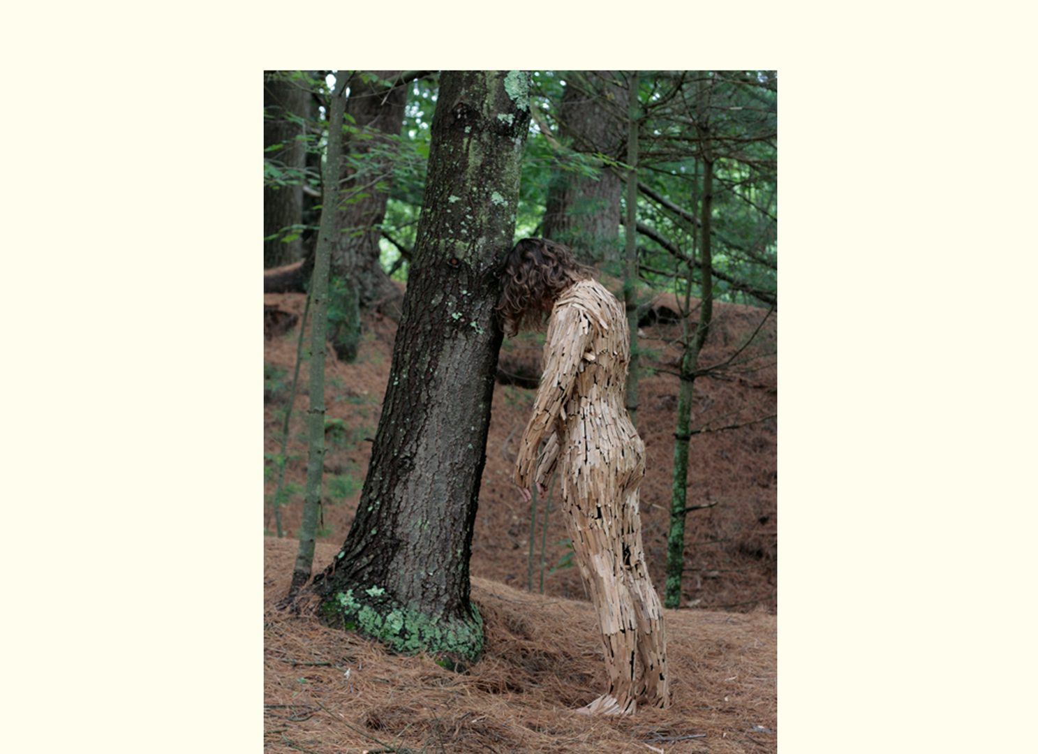 Linda Molenaar, Tree Pose, 2011