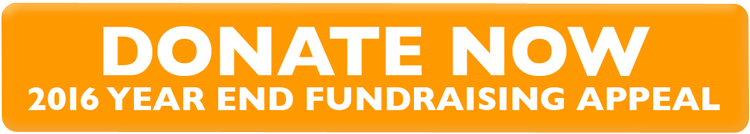 2016yeappeal_donate_orange
